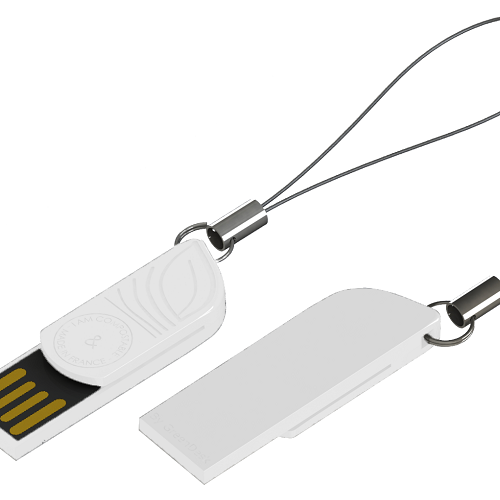 Clé USB Biodégradable Made In France