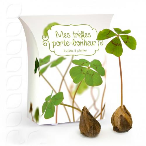 Boîte trèfle à 4 feuilles