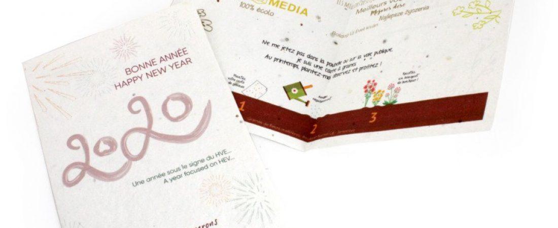 Cartes de vœux à planter