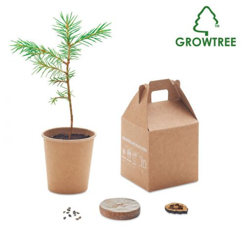 Arbre miniature GROWTREE™